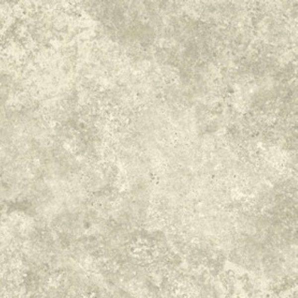 olympia scan72 600x600 - Olympia