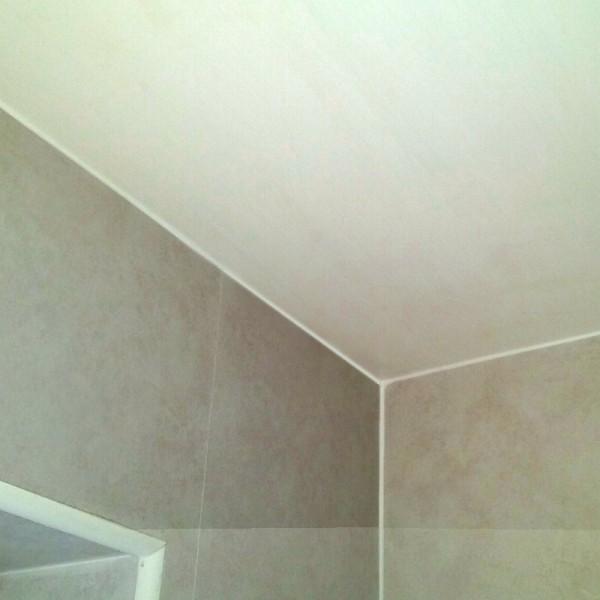 Blanca Classic White Bathroom Ceiling