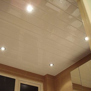 Whiteline Ceiling Panels