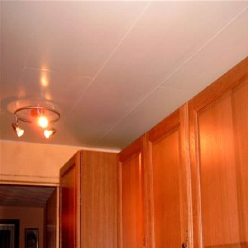 kichen ceiling4 - Ceiling Panel Applications