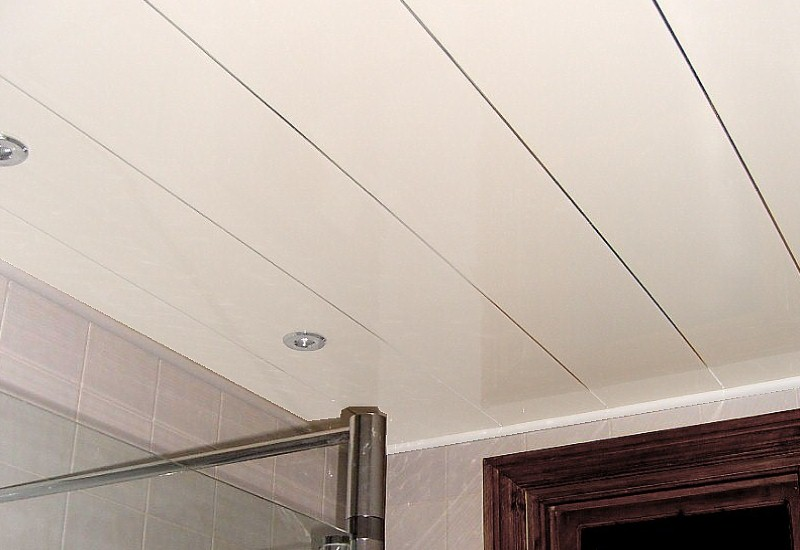 white and chrome bathroom ceiling cladding