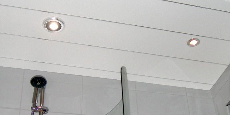 ceiling panels chrome strip